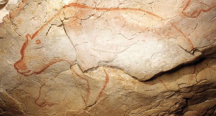 graphisme, grotte Chauvet