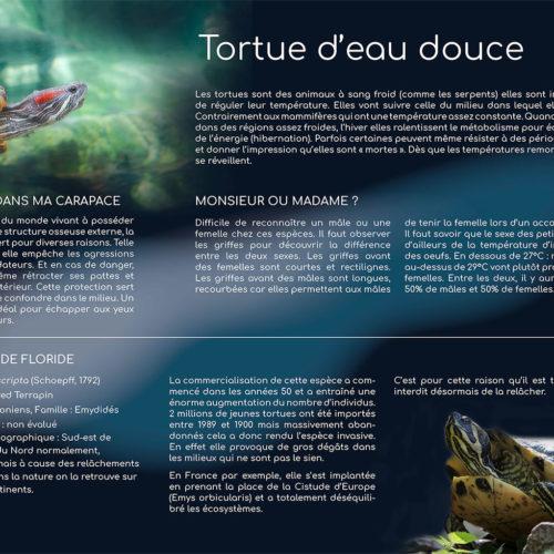 Création de panneaux pour l'aquarium de Lyon